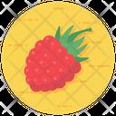 Healthy Fruit Raspberry Berry Icon