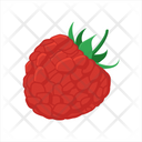 Raspberry Rasp Berry Icon