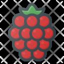 Raspberry Health Food Icon
