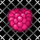 Raspberry Fruits Fruite Icon