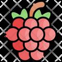 Raspberry Fruit Healthy Food Icon