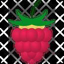 Raspberry Rubus Occidentalis Drupelet Icon