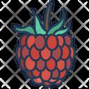 Raspberry Fruit Food Icon