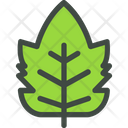 Raspberry Leaf Nature Icon