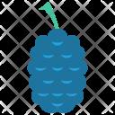 Raspberry Vitamins Healthy Icon