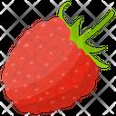 Raspberry Icon