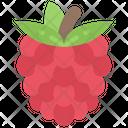 Raspberry Food Eating Icon