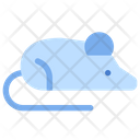 Rat Mouse Experimental Animal Icon