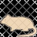 Rat Animal Creature Icon