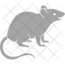 Rat Mole Mouse Icon