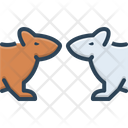 Rats Mouse Field Mouse Icon