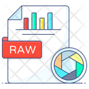 Raw File Raw Data Raw Format Icon