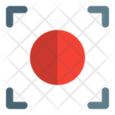 Record Recording Recording Button Icon