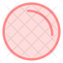 Play Rec Record Icon