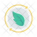 Recycle Leaf Leave Icon