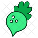 Red Beet Vegetable Icon