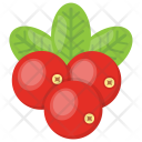 Red Berries Raspberry Icon