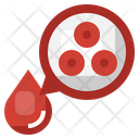 Red Blood Cells Erythrocytes Blood Cells Icon