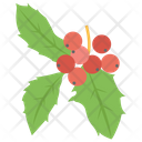 Red Currant Gooseberry Currant Fruit Icon