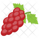 Red Grapes Pulpy Icon