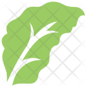 Red-haw Hawthorn Icon