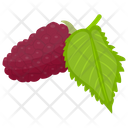 Red  Mulberry Icon