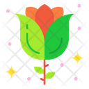 Red Rose Blossom Flower Icon