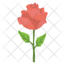 Red Rose Romance Icon