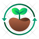 Reforestation Forest Tree Icon