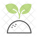 Reforestation Sprout Planting Icon