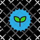 Regenerate Icon