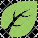 Regularize Daemonic Leaf Icon