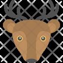 Reindee Icon