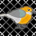 Reinita Tropical Icon