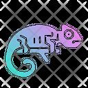 Reptile Pet Shop Icon