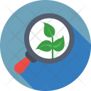 Research Botany Leaf Icon