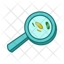 Magnifer Search Bacteria Icon