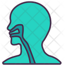 Respiratory System Human Body Icon