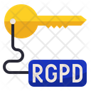 Rgpd Access Key Icon