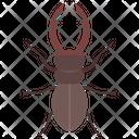 Rhinoceros Beetle Icon