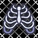 Rib Icon