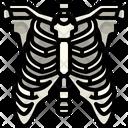 Rib Organ Body Part Icon