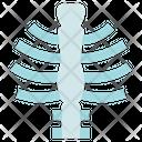 Organ Anatomy Ribcage Ribs Icon