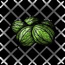 Ribes Gooseberry Bush Icon