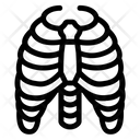 Ribs Ribs Cage Ribs Anatomy Icon