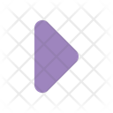 Right Right Arrow Right Side Icon