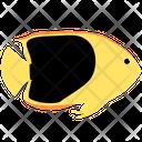Rock Beauty Angelfish Icon