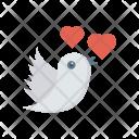 Romance Bird Fly Icon