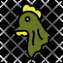 Hen Chicken Head Icon