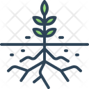 Root Rootlet Sprout Icon